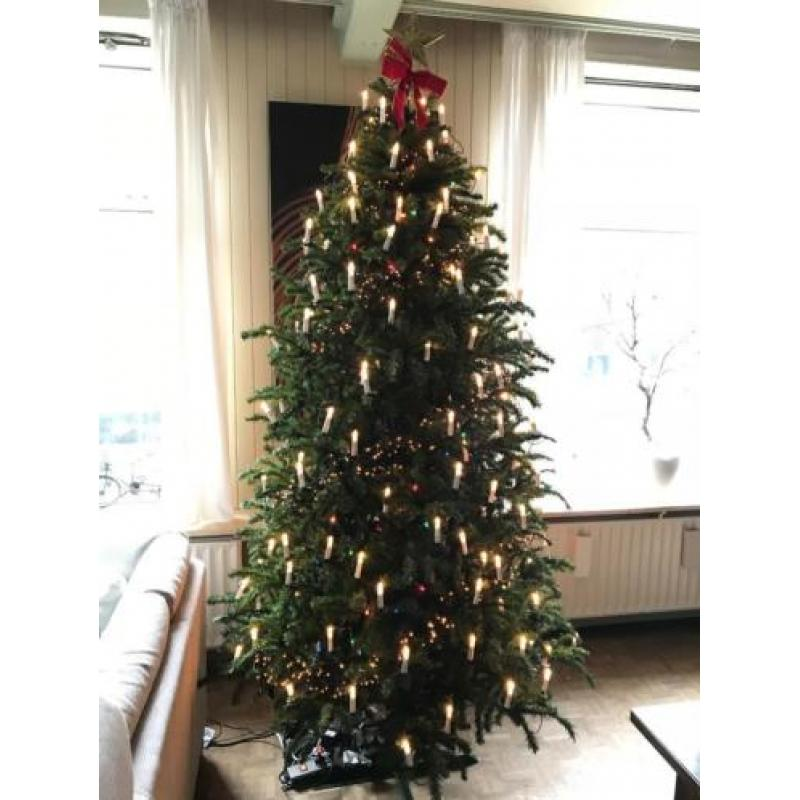 Kunstkerstboom Triumph Tree Swiss Alpine 260cm !